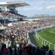 The Grand National Hospitality 2015